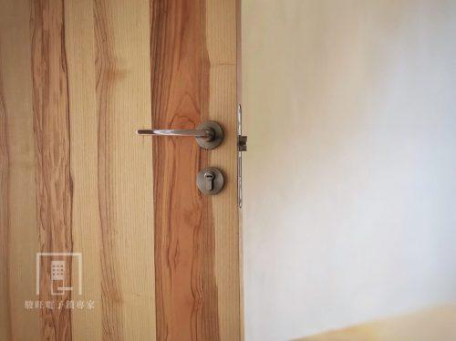 將虎藝術門木門-橄欖木-5